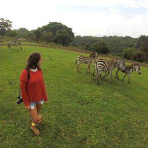 Sobre o dia que eu mais senti medo na vida, num Safári na Tanzânia