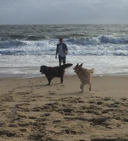 Dewey Beach, DE in autumn