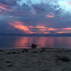 another Filipino sunset, Moalboal