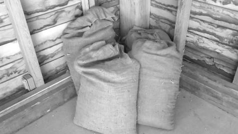 grain sacks 1