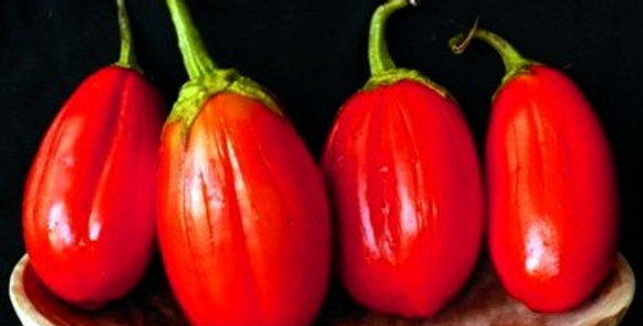 Eggplant - Long Red                       30 Seeds