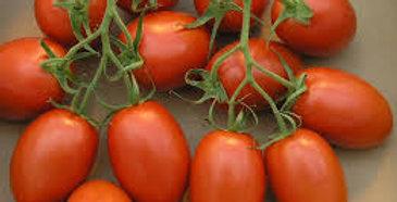 Tomato- Roma                                      40 Seeds