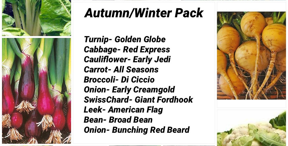 Autumn/Winter Pack       10 pack
