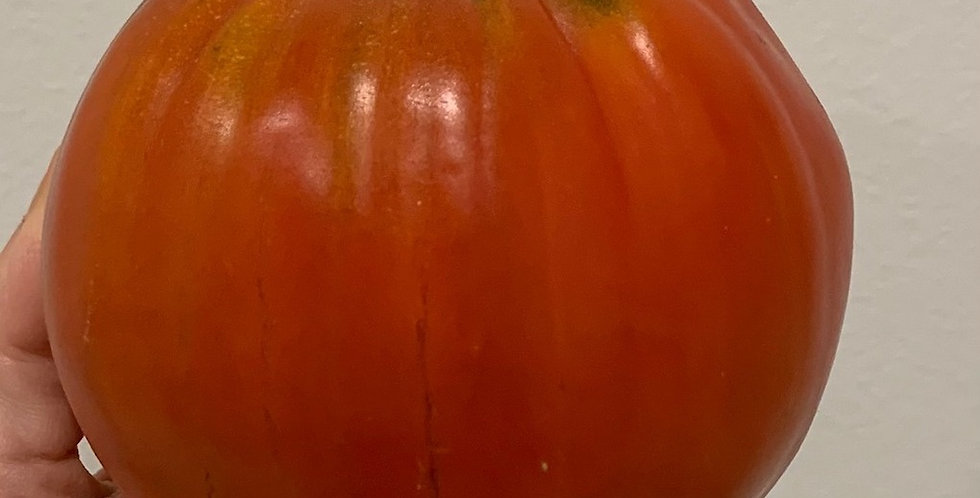 Tomato- Red Oxheart                     25 Seeds
