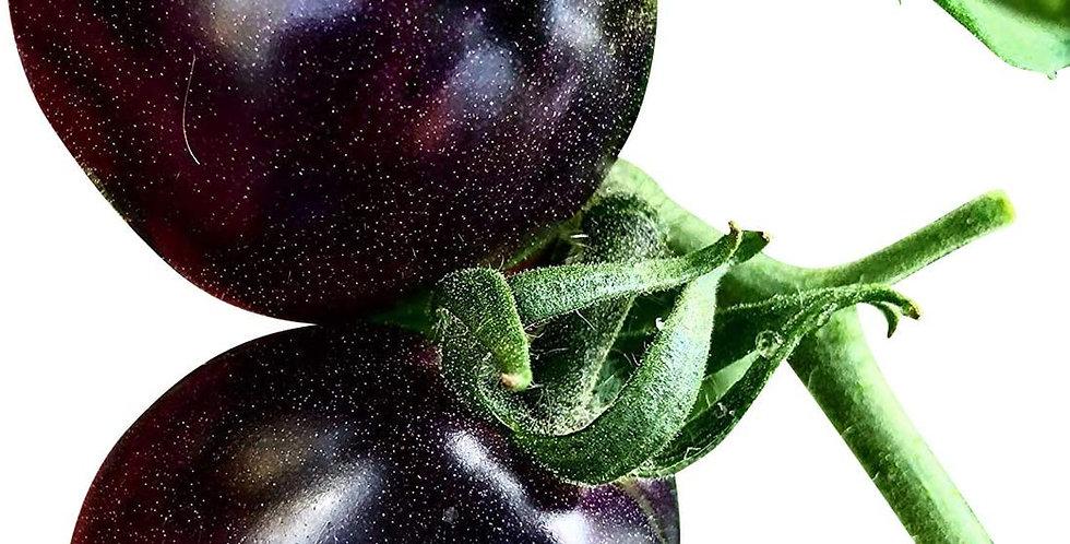 Tomato- Indigo Rose                       25 Seeds