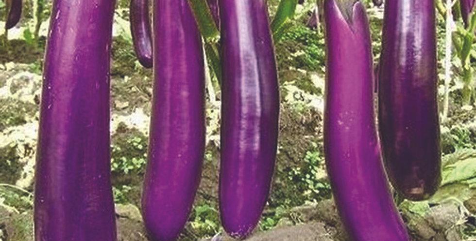 Eggplant - Long Purple                  30 Seeds