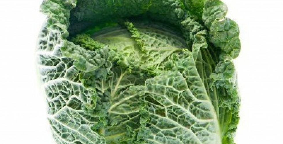 Cabbage- Savoy Green Versus    100 Seeds