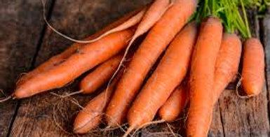 Carrot- All Seasons                         100 Seeds