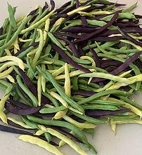 mixed beans.jpg