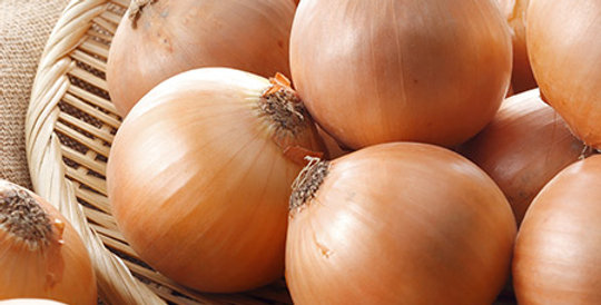 Onion- Early Gladalan Brown      50 Seeds