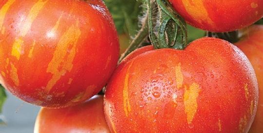 Tomato- Tigerella                               40 Seeds