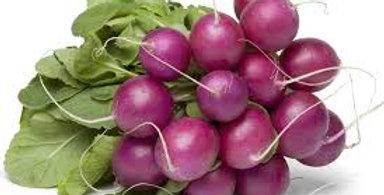 Radish- Purple Plum                25 Seeds
