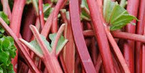 Rhubarb- Victoria                                20 Seeds