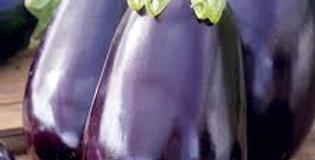 Eggplant - Black Beauty                    30 Seeds