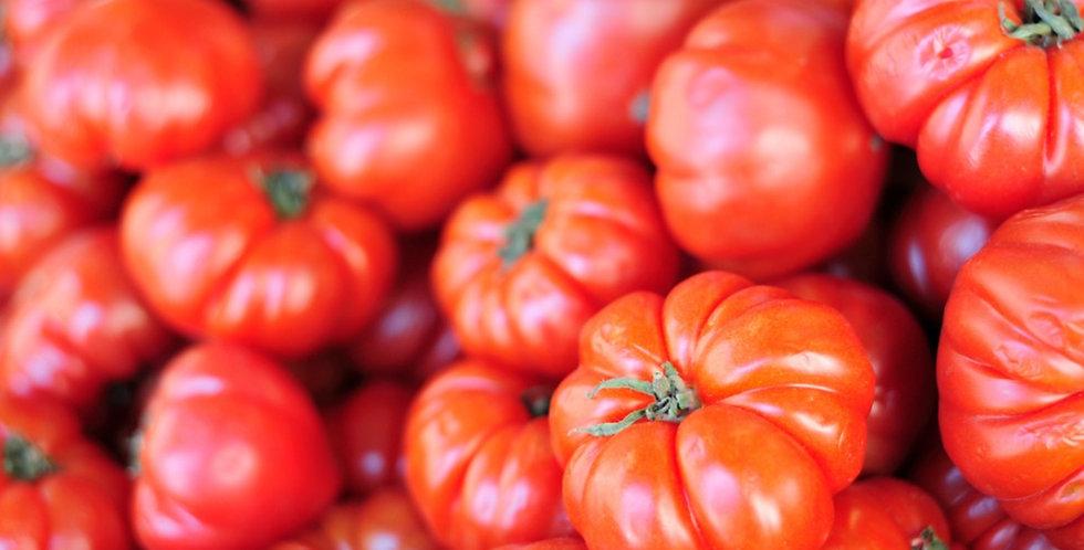 Tomato- Beefsteak                              40 Seeds