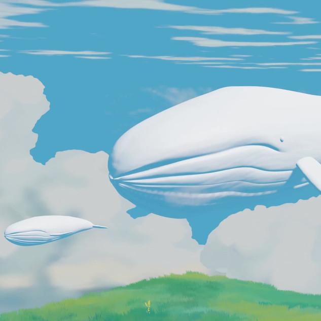whale_cloud_aurora_1.mp4