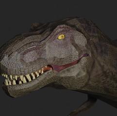 face_rex.mp4
