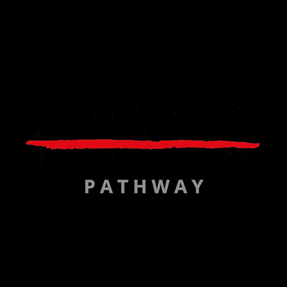 BI Pathway (2).png