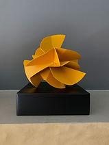 OP-Flor-de-cayena_amarilla_IMG_4784.jpg