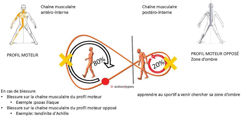 chaine musculaire golf, préfèrence motrice golf, analyse swing de golf, swing de golf adapté a chacun