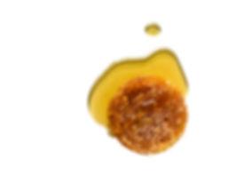 whole honey comb.jpg