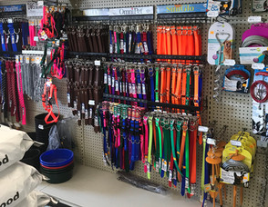 Dog Collars, Leads, Harnesses & Tie-Outs