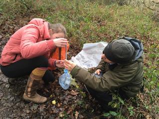 Mammal Surveying at the Cornwall Seal Sanctuary