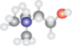 alpha-gpc-molecule-300x193.png