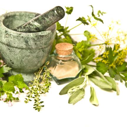 Herbs of the Week (5/10-5/17/20)