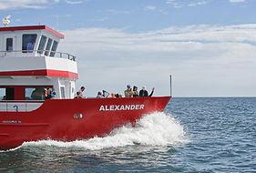 MS Alexander klein.jpg