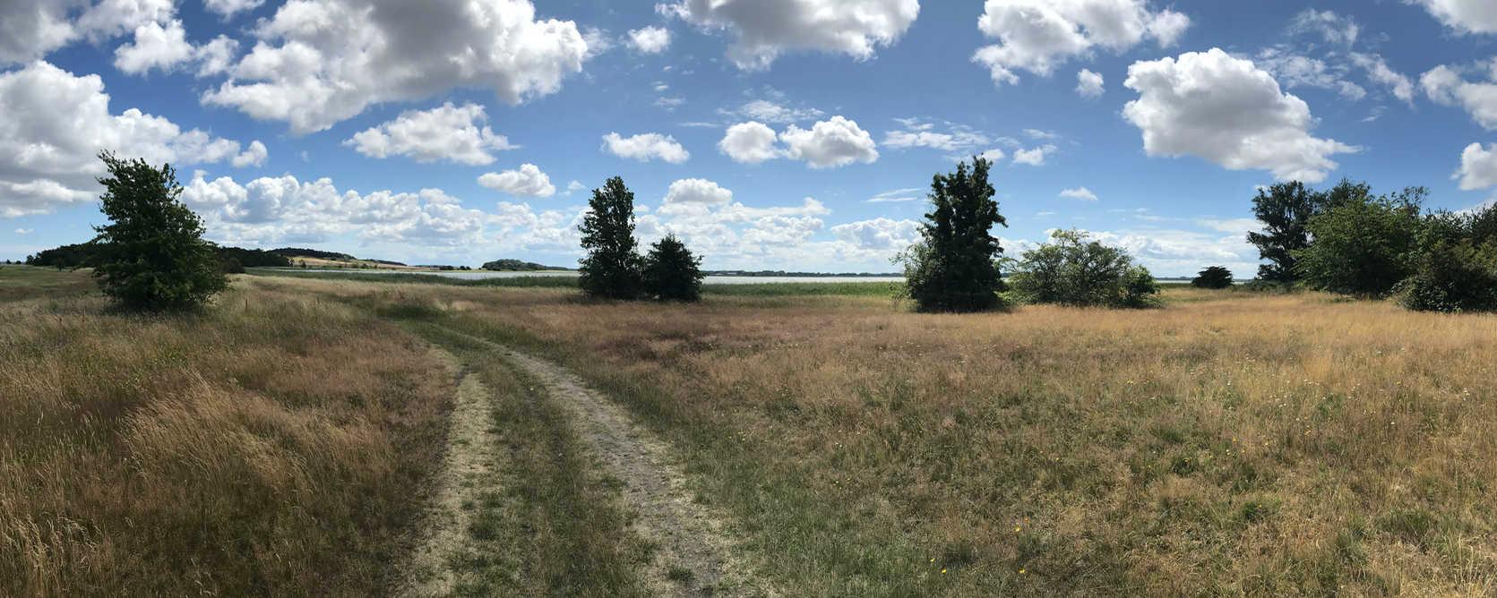 Boddenpanaorama-Weg