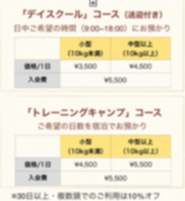スクリーンショット 2019-09-29 13.24.18.png