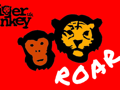 Tiger Monkey launches new website funded by Arts Council England and National Lottery Players.
