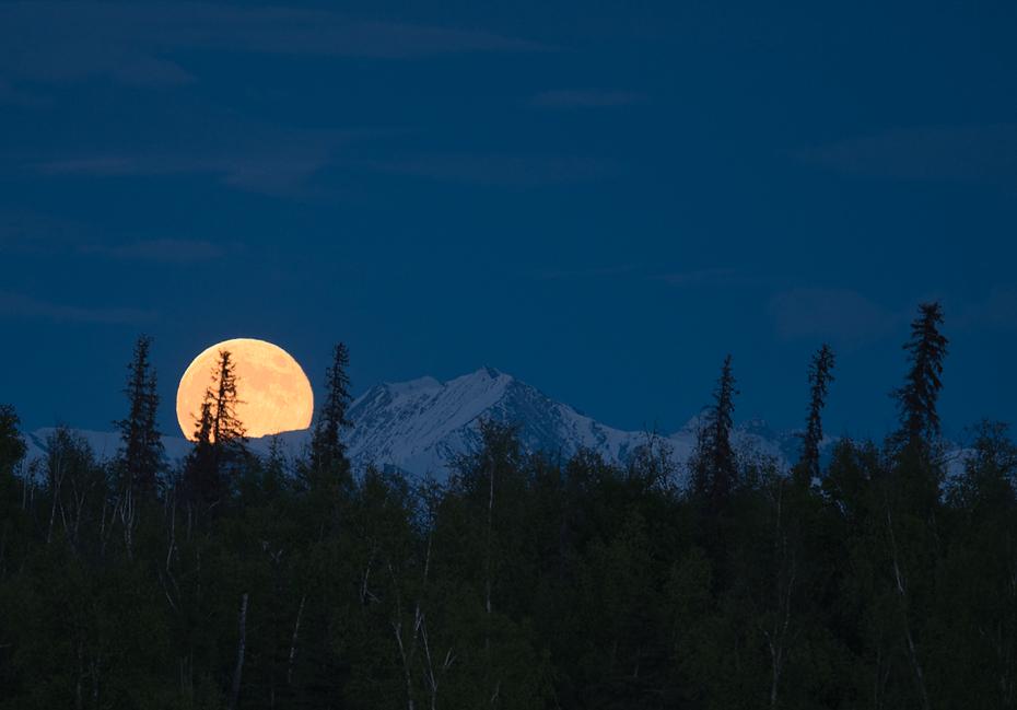 _5180012-Moonrise.png