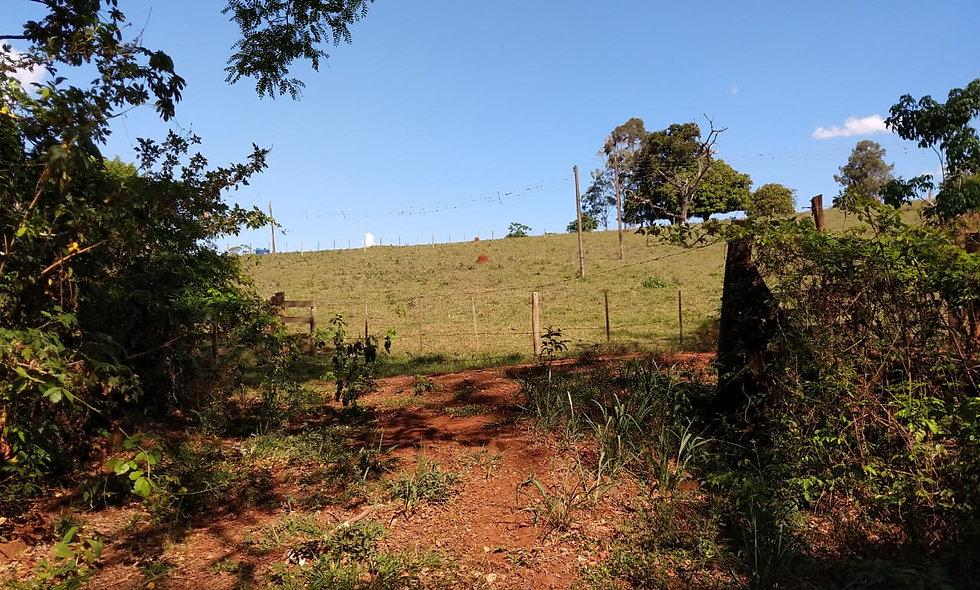 REF 192 Área de Terra 13.389 m ². Próximo estrada do Funil,  Piraju/SP.