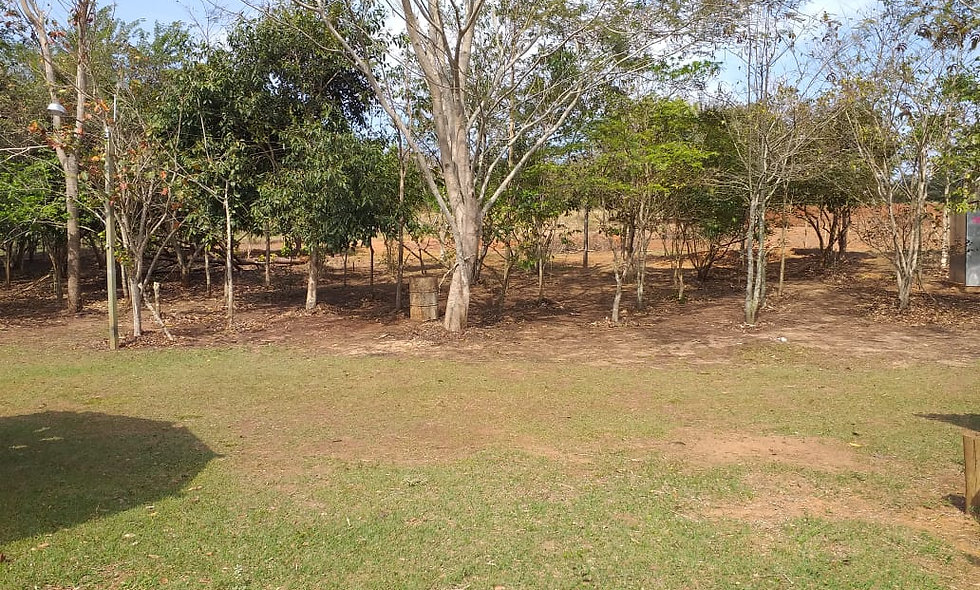 REF 169 Lote de terreno 800m²,  Piraju /SP.