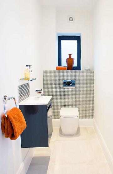 cool toilet