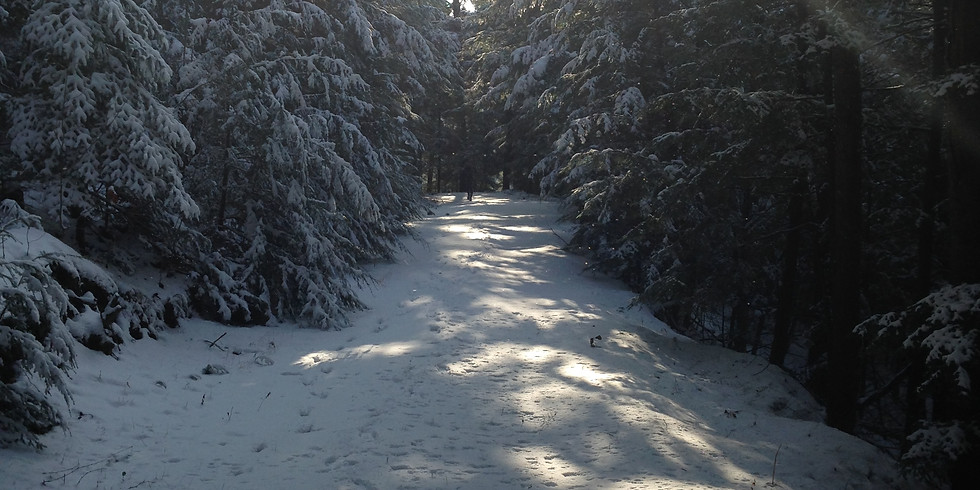 Underdown Snowshoe Hike