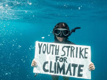 The first underwater climate strike