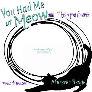 ForeverPledge.jpg