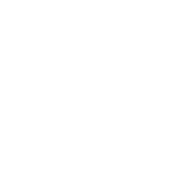 White Wahtsapp Icon
