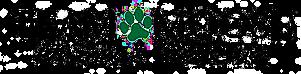Team Moose Animal Rescue