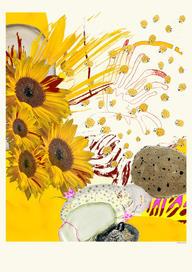 Collage numérique Sandrine Stahl Tournesols.jpg