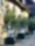 Luxe familie vakantiehuizen limousin