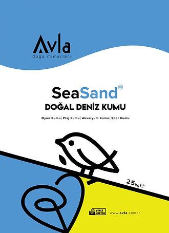 SeaSand.Recto.jpg
