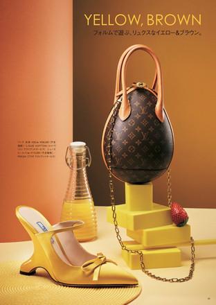 VogueBAg&SHOESBrown yellow2019.jpg