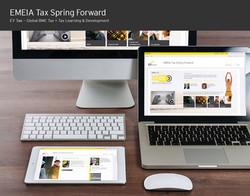 Tax Campaign activation portal