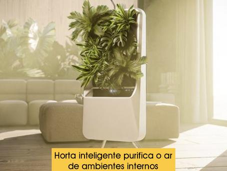 Horta inteligente purifica o ar de ambientes internos