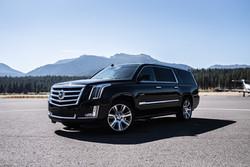 Cadillac Escalade ESV 4WD AWD