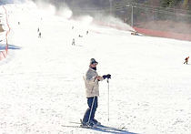 Recommended Tours from Seoul - Jisan Forest Ski Resort Sightseeing Trip & Winter Sports | KoreaToDo